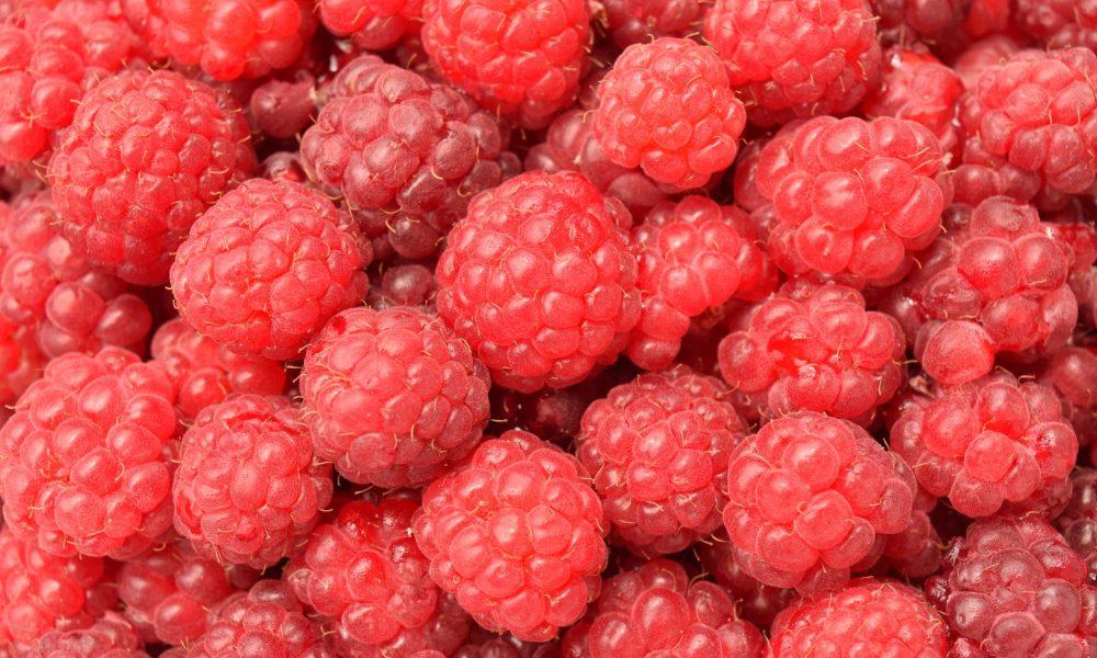 Wild raspberry ketone : Dangers et effets secondaires ?
